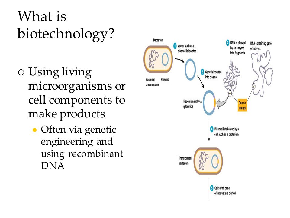 What is biotechnology.