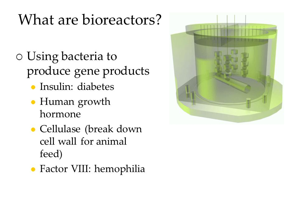What are bioreactors.