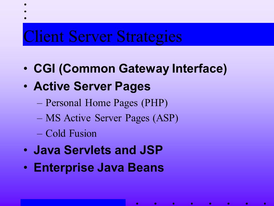 Client Server Strategies CGI (Common Gateway Interface) Active Server Pages –Personal Home Pages (PHP) –MS Active Server Pages (ASP) –Cold Fusion Java Servlets and JSP Enterprise Java Beans