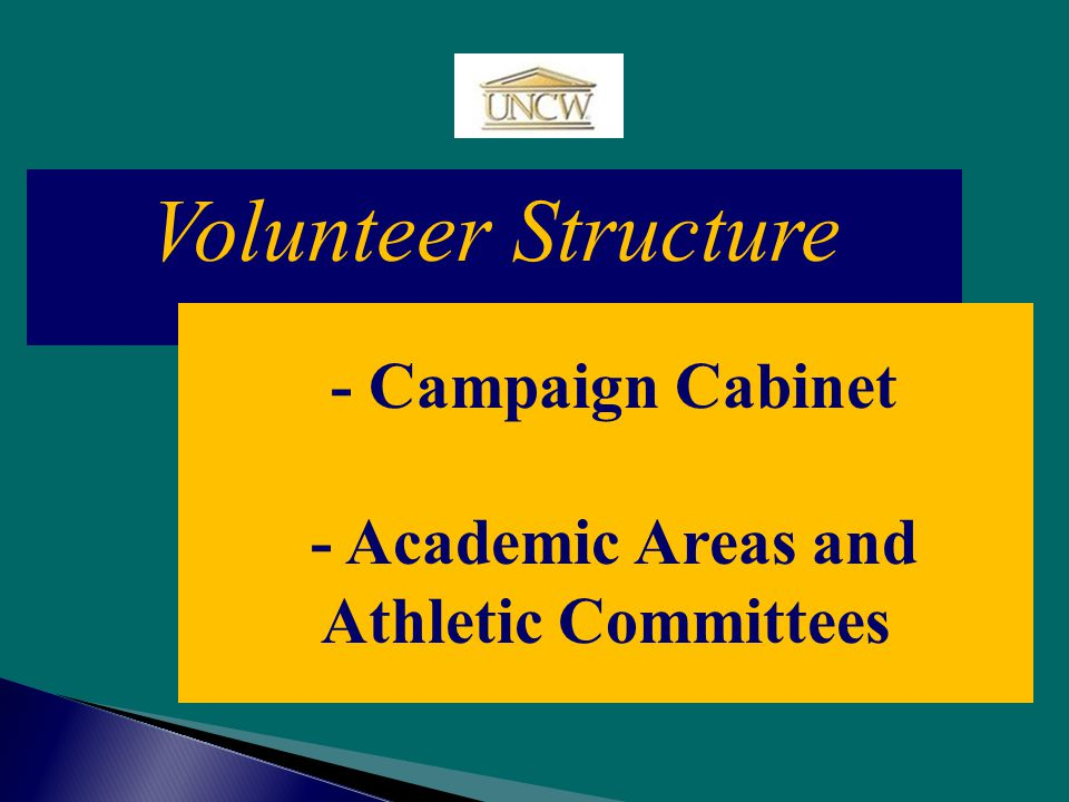 Volunteer Structure - Campaign Cabinet - Academic Areas and Athletic Committees