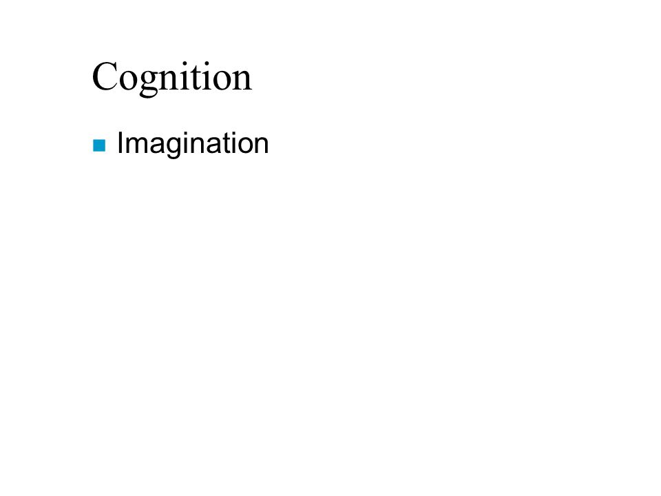 n Imagination
