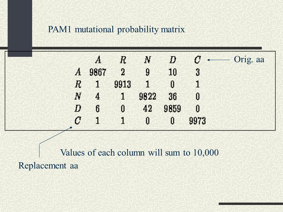 PAM1 mutational probability matrix Values of each column will sum to 10,000 Orig. aa Replacement aa