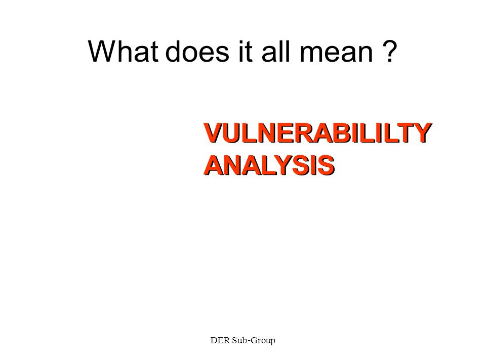 DER Sub-Group What does it all mean VULNERABILILTY ANALYSIS