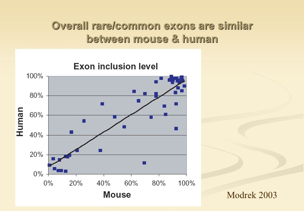 Overall rare/common exons are similar between mouse & human Modrek 2003