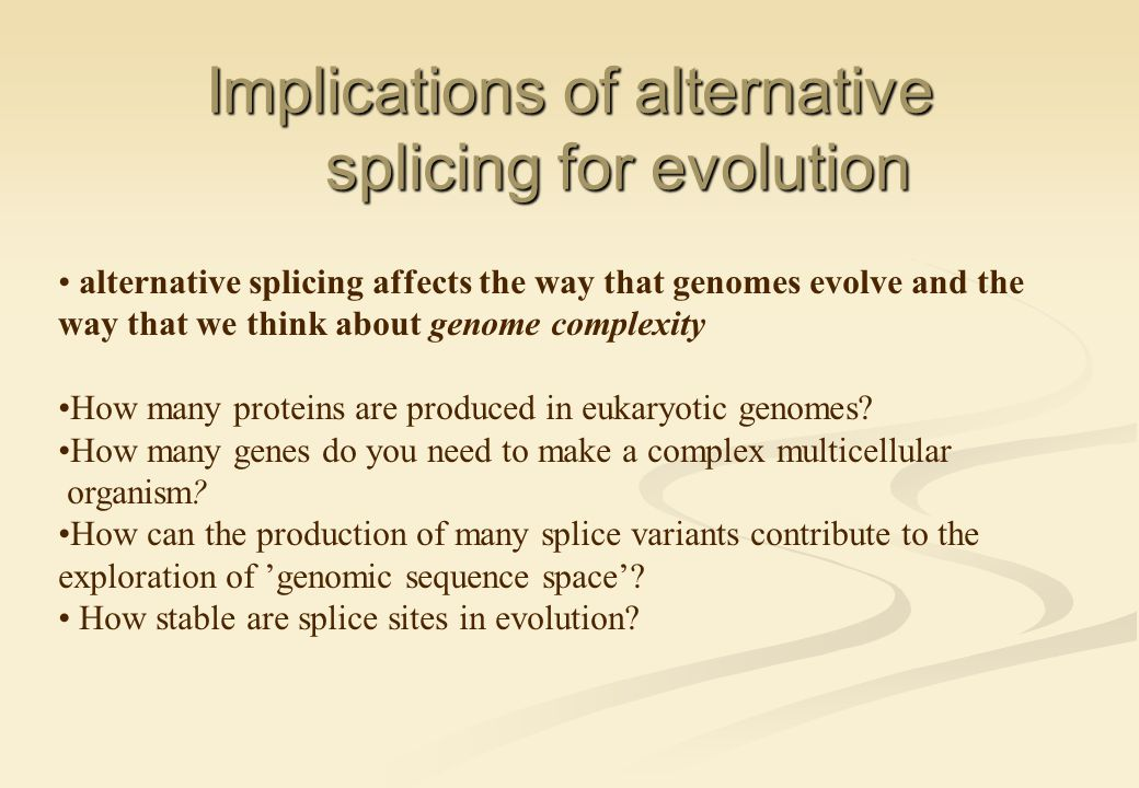 Implications of alternative splicing for evolution alternative splicing affects the way that genomes evolve and the way that we think about genome complexity How many proteins are produced in eukaryotic genomes.