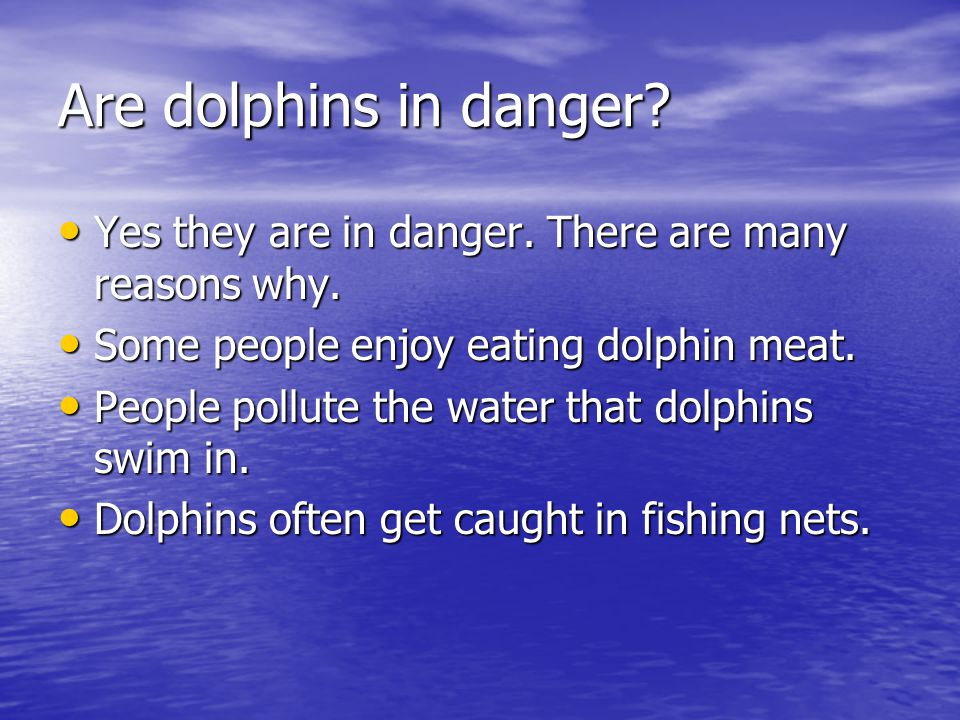 Are dolphins in danger.Yes they are in danger. There are many reasons why.