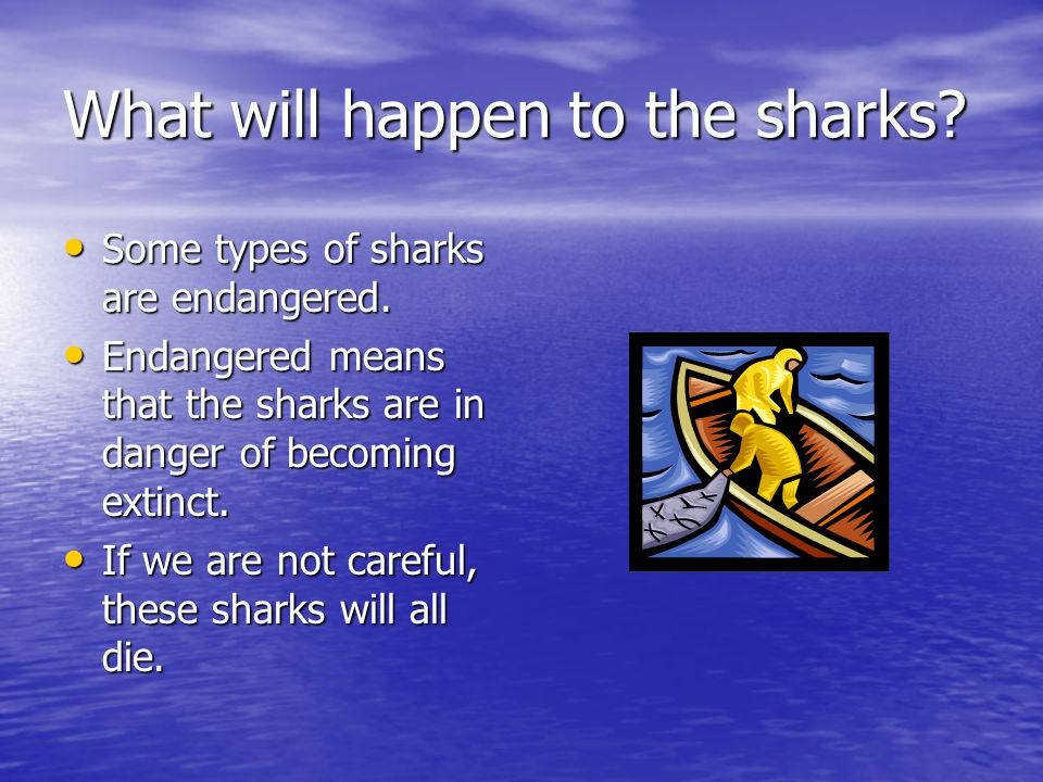 What will happen to the sharks.Some types of sharks are endangered.