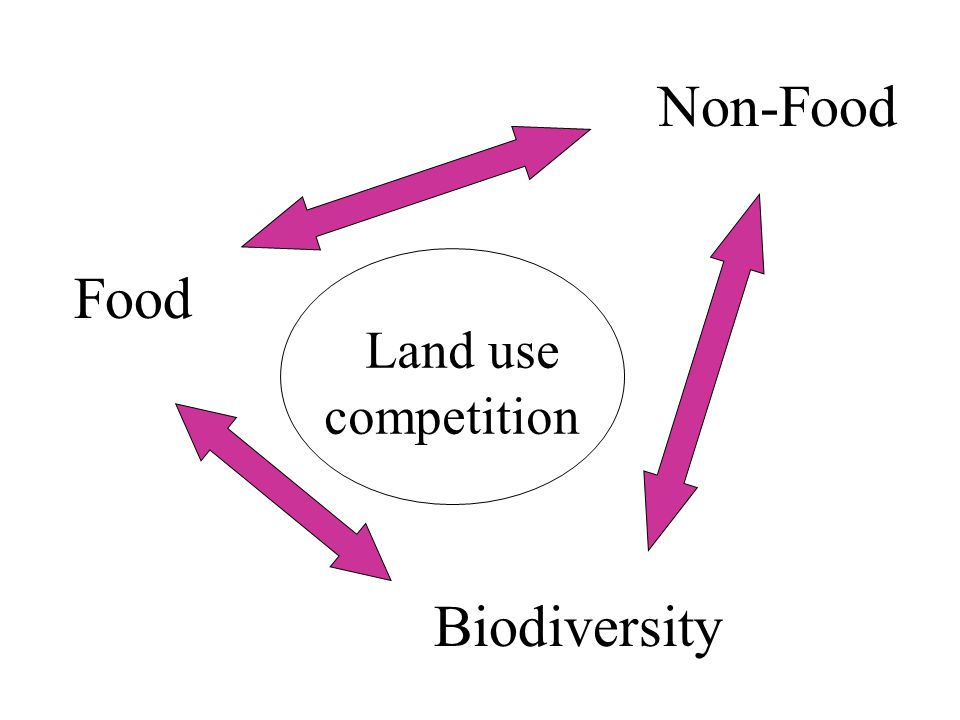 Food Non-Food Biodiversity Land use competition