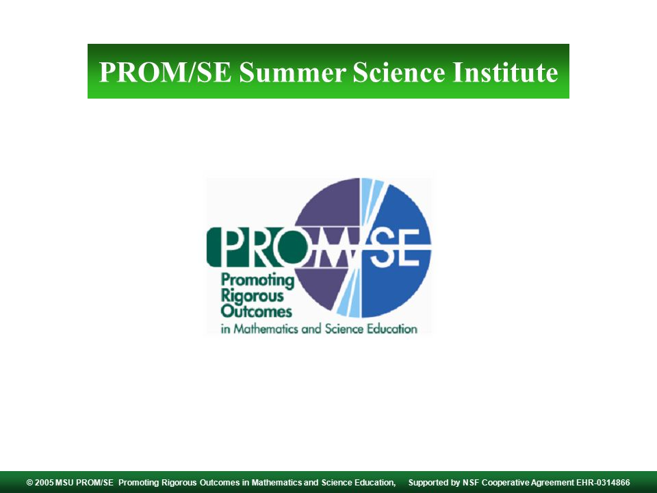 PROM/SE Summer Science Institute © 2005 MSU PROM/SE Promoting Rigorous Outcomes in Mathematics and Science Education, Supported by NSF Cooperative Agreement EHR