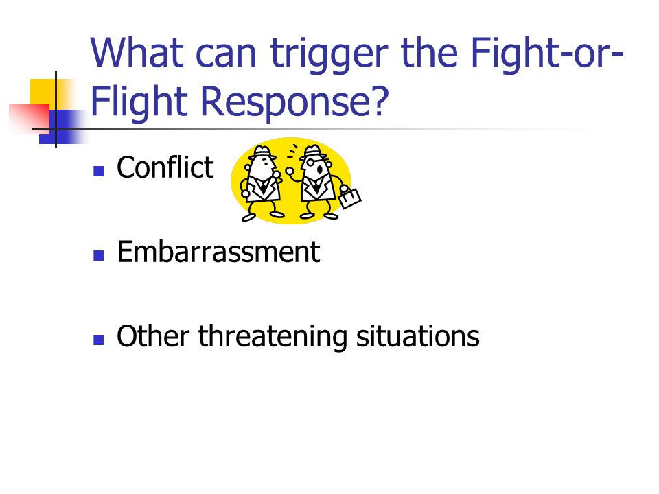 What can trigger the Fight-or-Flight Response Fear Severe Pain Anger