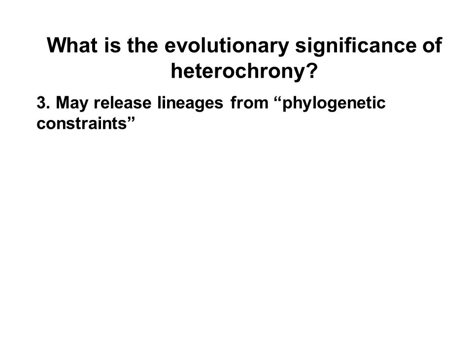 What is the evolutionary significance of heterochrony.