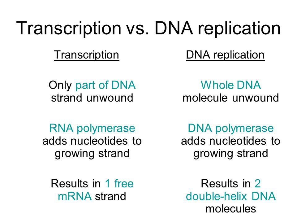 Transcription vs.