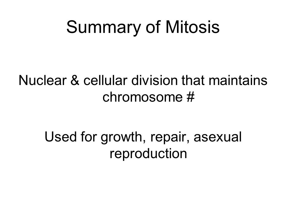 Summary of Mitosis Nuclear & cellular division that maintains chromosome # Used for growth, repair, asexual reproduction