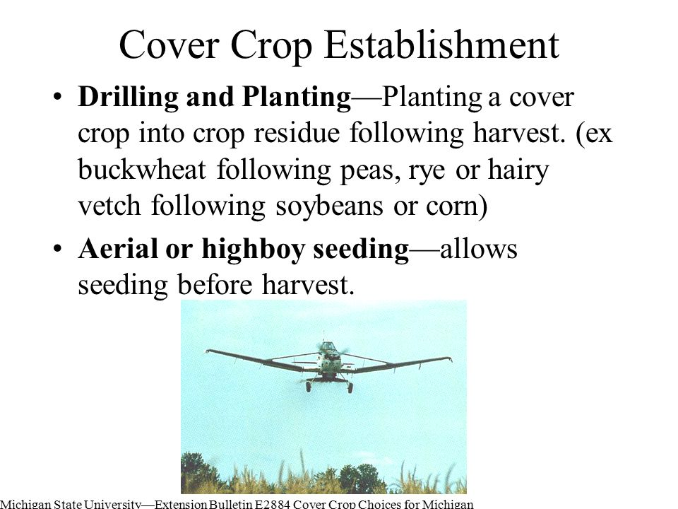 Cover Crop Establishment Drilling and Planting—Planting a cover crop into crop residue following harvest.