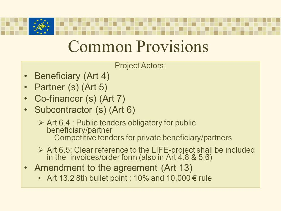 Common Provisions Project Actors: Beneficiary (Art 4) Partner (s) (Art 5) Co-financer (s) (Art 7) Subcontractor (s) (Art 6)  Art 6.4 : Public tenders obligatory for public beneficiary/partner Competitive tenders for private beneficiary/partners  Art 6.5: Clear reference to the LIFE-project shall be included in the invoices/order form (also in Art 4.8 & 5.6) Amendment to the agreement (Art 13) Art th bullet point : 10% and € rule