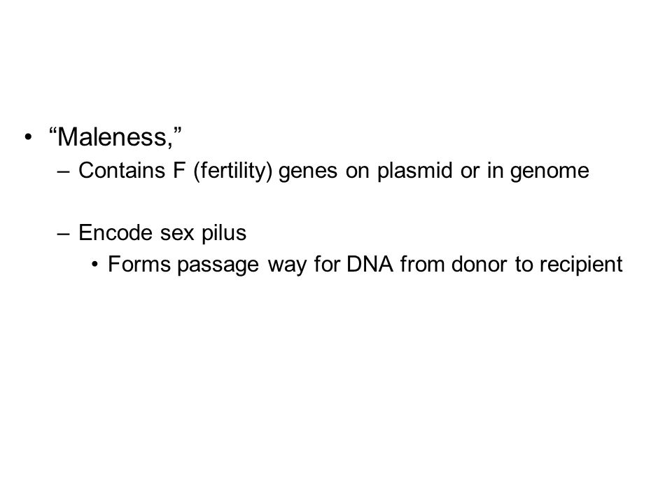Maleness, –Contains F (fertility) genes on plasmid or in genome –Encode sex pilus Forms passage way for DNA from donor to recipient