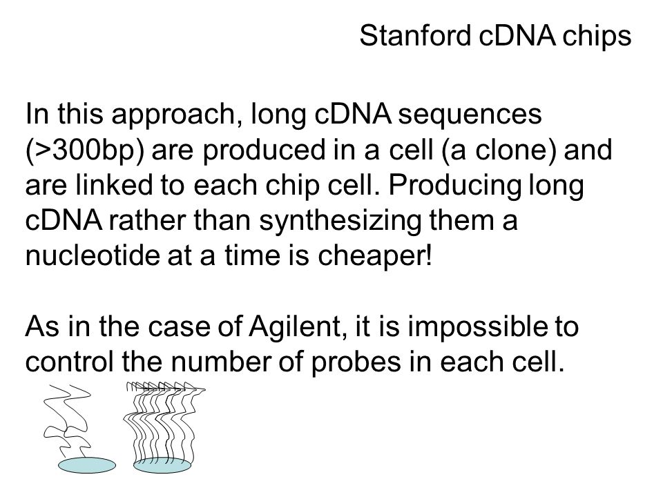 In this approach, long cDNA sequences (>300bp) are produced in a cell (a clone) and are linked to each chip cell.