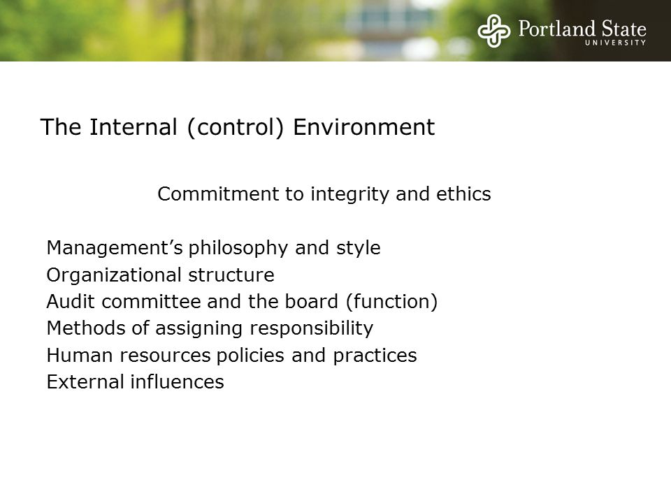 Commitment to integrity and ethics Management's philosophy and style Organizational structure Audit committee and the board (function) Methods of assigning responsibility Human resources policies and practices External influences The Internal (control) Environment