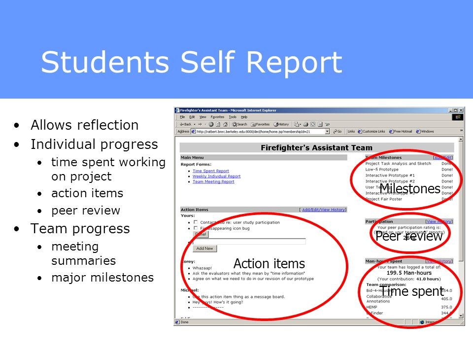 individual reflective report essay