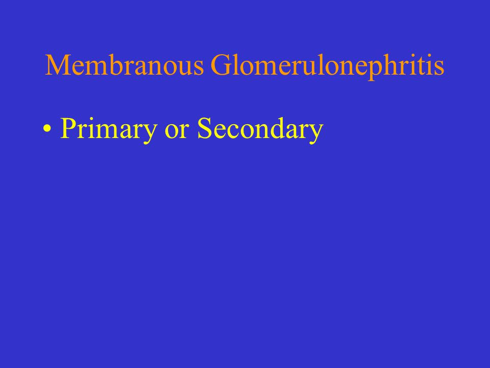 Membranous Glomerulonephritis Primary or Secondary