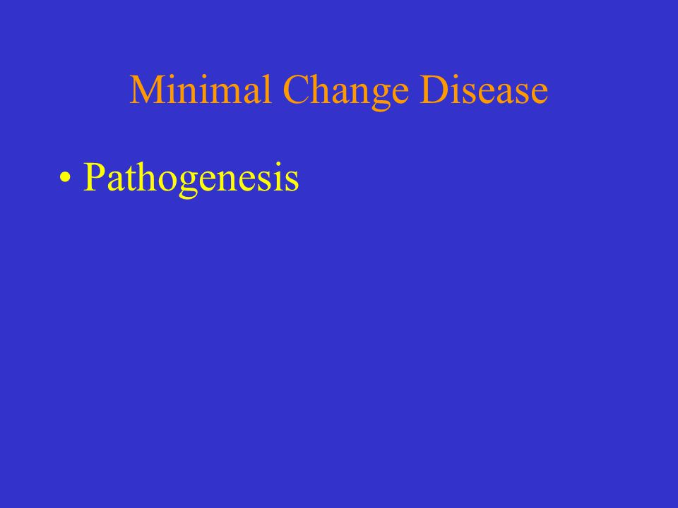 Minimal Change Disease Pathogenesis