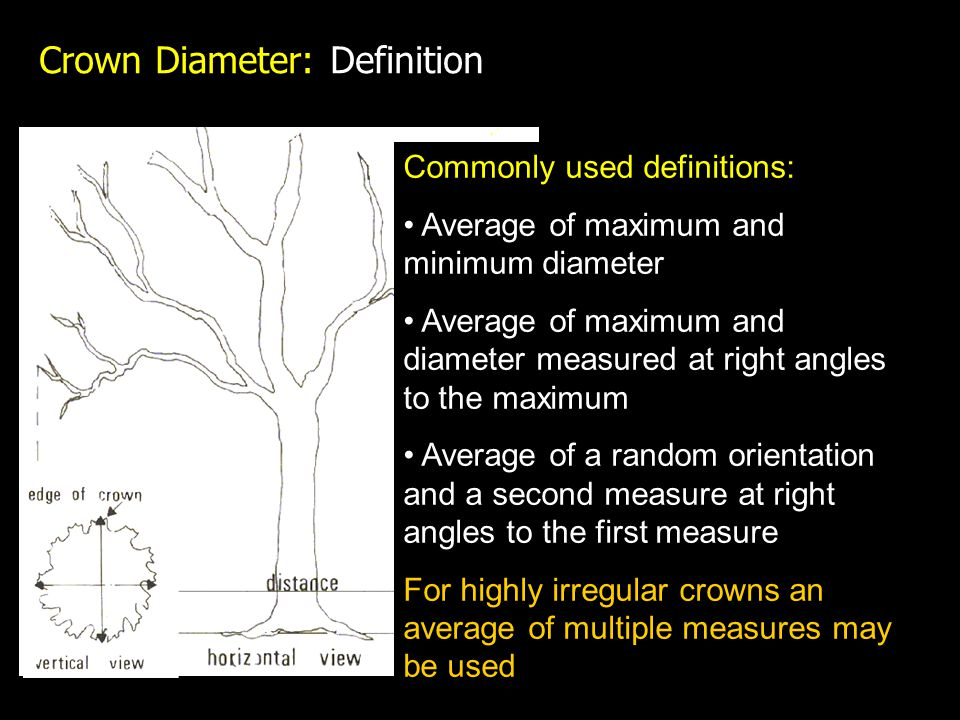 Crown Diameter: Definition Commonly used definitions: Average of maximum and minimum diameter Average of maximum and diameter measured at right angles to the maximum Average of a random orientation and a second measure at right angles to the first measure For highly irregular crowns an average of multiple measures may be used