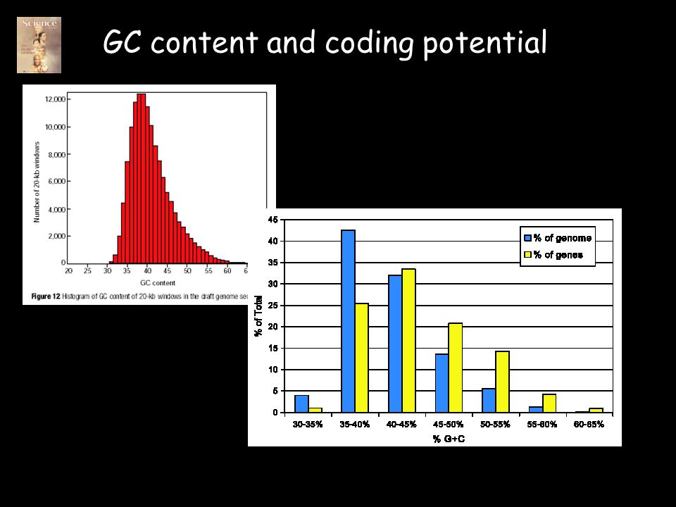 GC content and coding potential