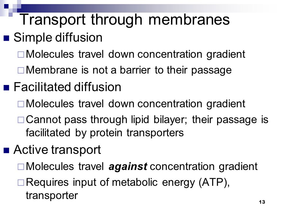 13 Transport through membranes Simple diffusion  Molecules travel down concentration gradient  Membrane is not a barrier to their passage Facilitated diffusion  Molecules travel down concentration gradient  Cannot pass through lipid bilayer; their passage is facilitated by protein transporters Active transport  Molecules travel against concentration gradient  Requires input of metabolic energy (ATP), transporter