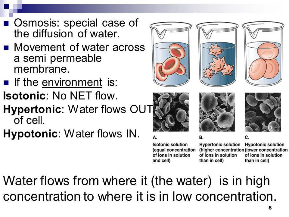8 Osmosis: special case of the diffusion of water.