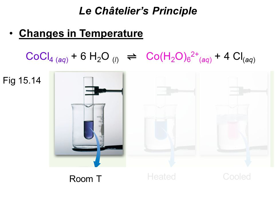 Le Châtelier's Principle Changes in Temperature ⇌ CoCl 4 (aq) + 6 H 2 O (l) Co(H 2 O) 6 2+ (aq) + 4 Cl (aq) Fig Room T HeatedCooled