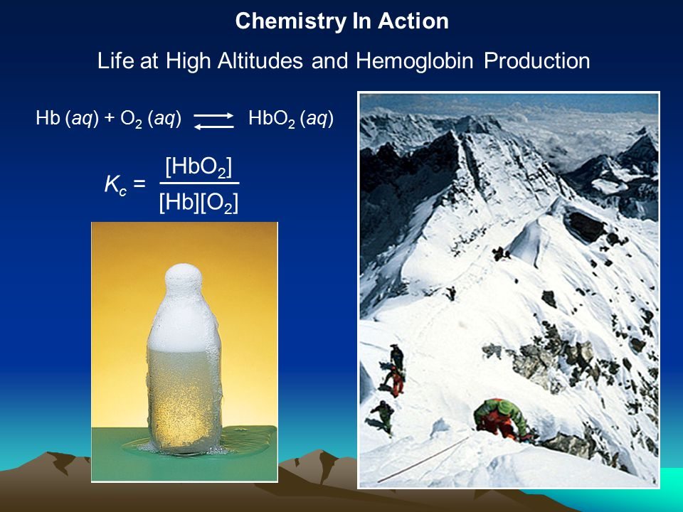 Chemistry In Action Life at High Altitudes and Hemoglobin Production K c = [HbO 2 ] [Hb][O 2 ] Hb (aq) + O 2 (aq) HbO 2 (aq)