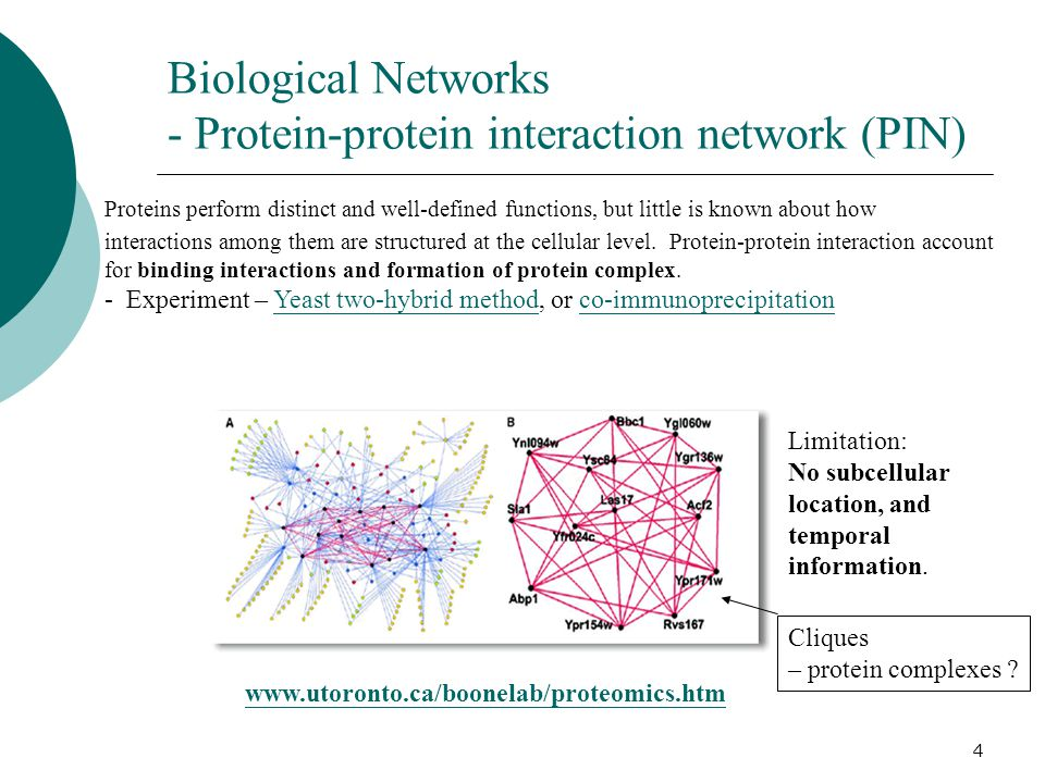 4 Biological Networks - Protein-protein interaction network (PIN) Proteins perform distinct and well-defined functions, but little is known about how interactions among them are structured at the cellular level.