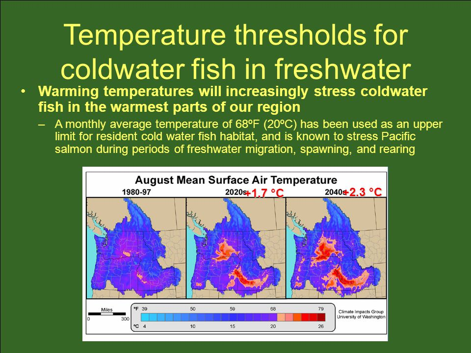 Temperature thresholds for coldwater fish in freshwater +1.7 °C +2.3 °C Warming temperatures will increasingly stress coldwater fish in the warmest parts of our region –A monthly average temperature of 68ºF (20ºC) has been used as an upper limit for resident cold water fish habitat, and is known to stress Pacific salmon during periods of freshwater migration, spawning, and rearing