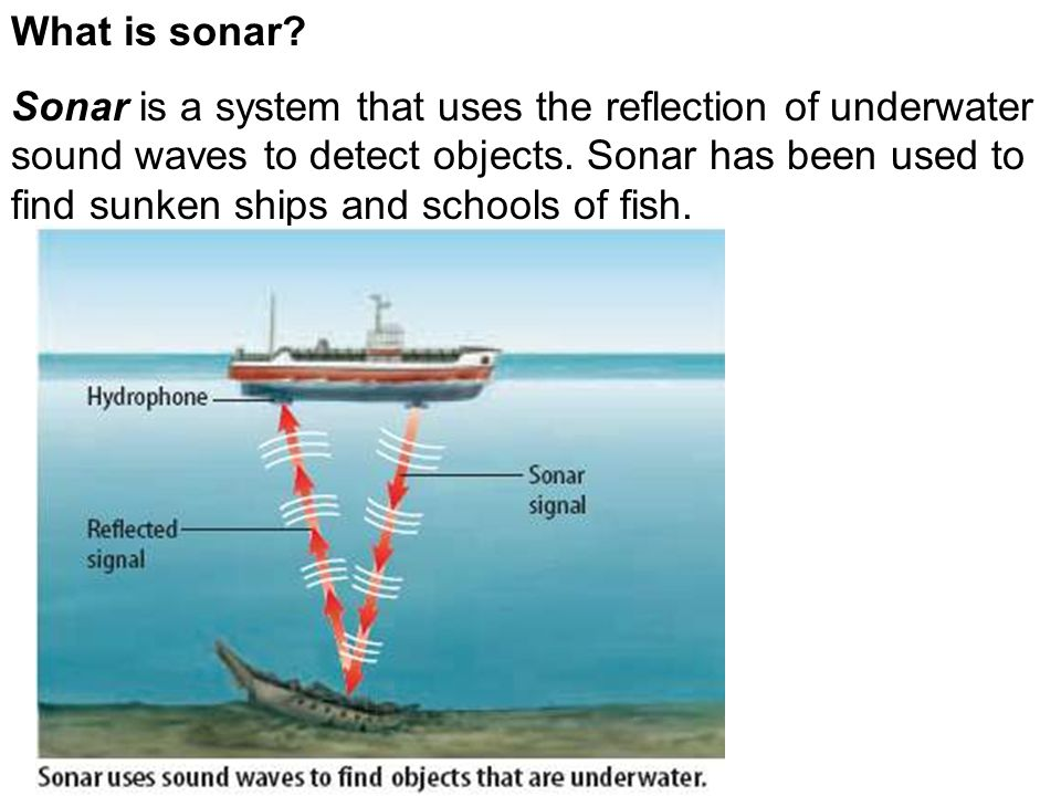 What is sonar.