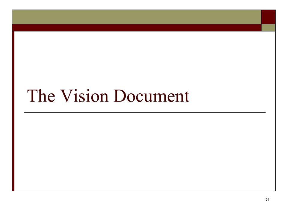 21 The Vision Document
