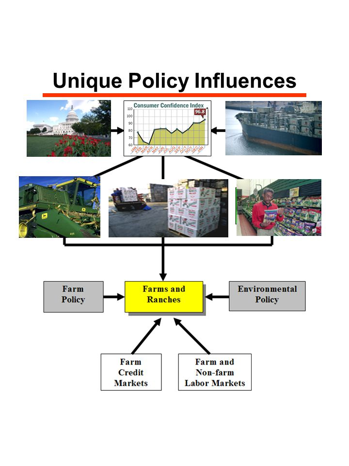 Unique Policy Influences
