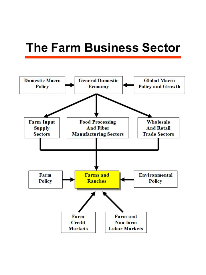 The Farm Business Sector