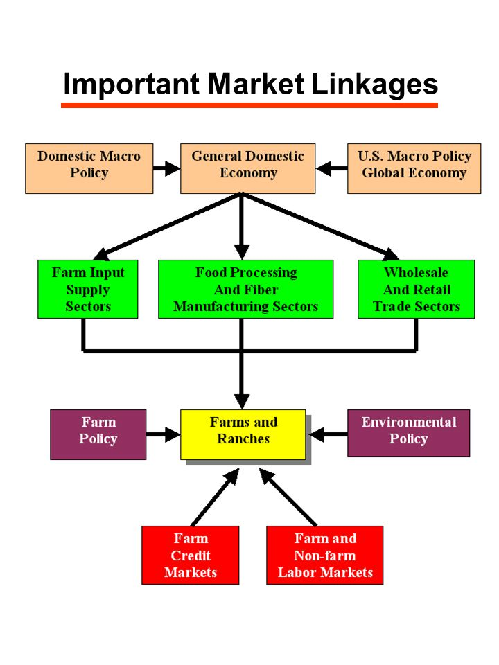Important Market Linkages