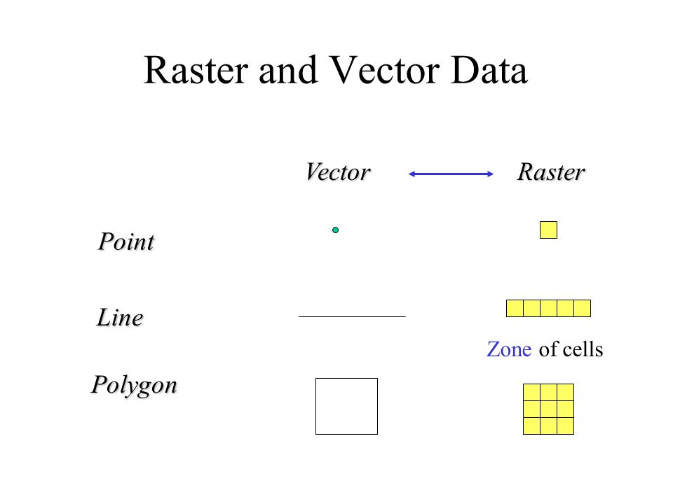 Raster and Vector Data Point Line Polygon VectorRaster Zone of cells