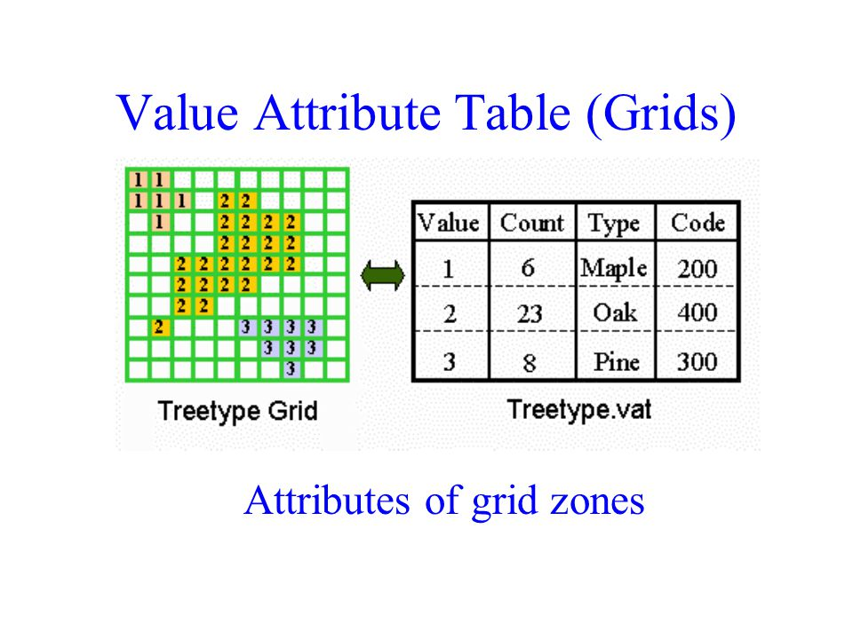 Value Attribute Table (Grids) Attributes of grid zones