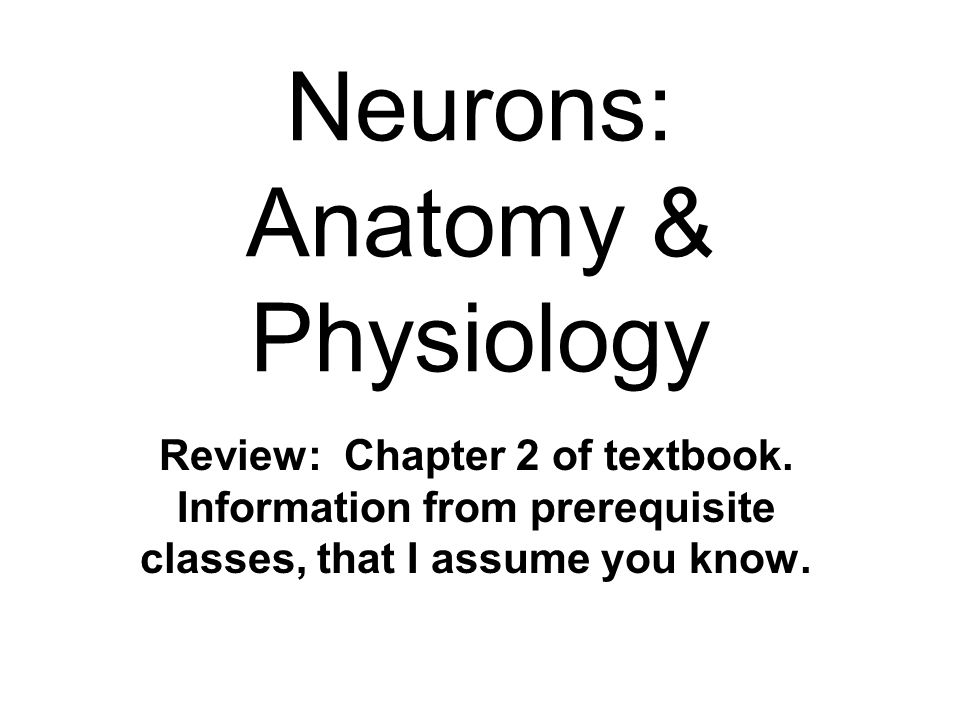 Neurons: Anatomy & Physiology Review: Chapter 2 of textbook ...