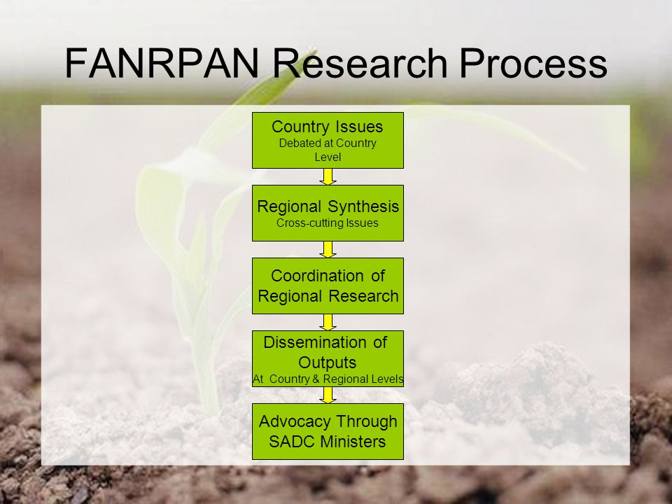 FANRPAN Research Process Country Issues Debated at Country Level Regional Synthesis Cross-cutting Issues Coordination of Regional Research Dissemination of Outputs At Country & Regional Levels Advocacy Through SADC Ministers