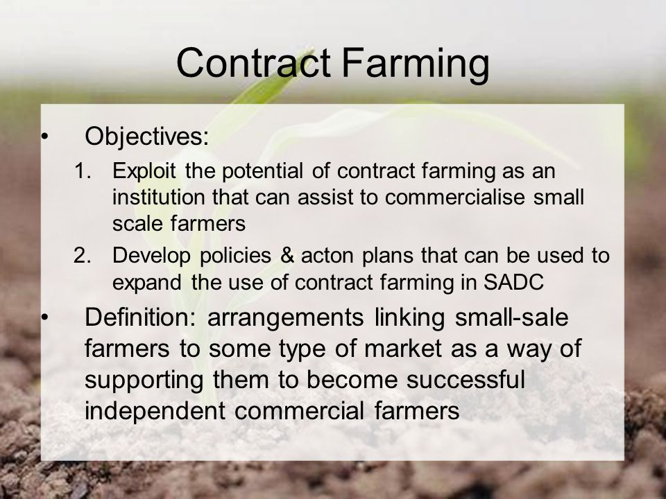 Contract Farming Objectives: 1.Exploit the potential of contract farming as an institution that can assist to commercialise small scale farmers 2.Develop policies & acton plans that can be used to expand the use of contract farming in SADC Definition: arrangements linking small-sale farmers to some type of market as a way of supporting them to become successful independent commercial farmers