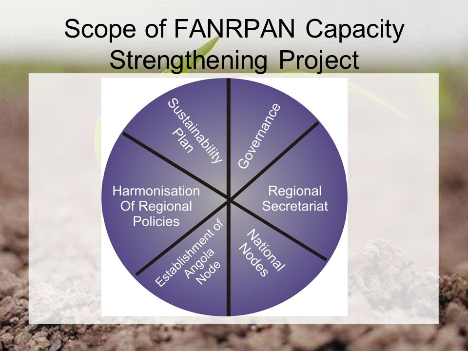 Scope of FANRPAN Capacity Strengthening Project