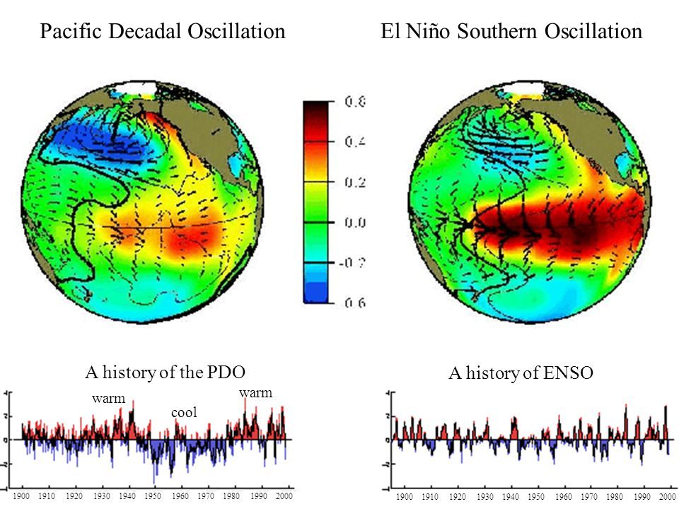 A history of the PDO warm cool warm A history of ENSO Pacific Decadal OscillationEl Niño Southern Oscillation