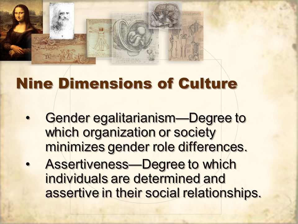 Nine Dimensions of Culture Gender egalitarianism—Degree to which organization or society minimizes gender role differences.