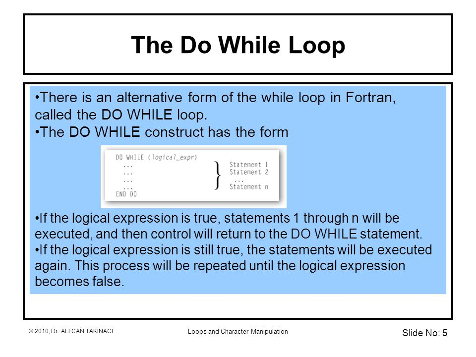 Loops and Character Manipulation The Do While Loop There is an alternative form of the while loop in Fortran, called the DO WHILE loop.