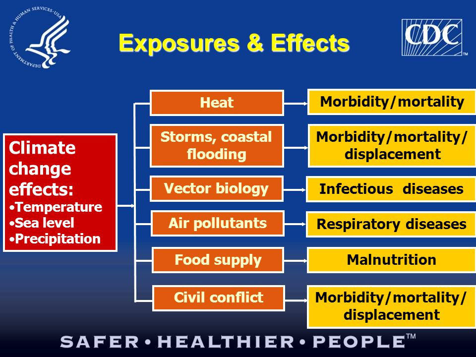 Exposures & Effects Heat Storms, coastal flooding Vector biology Air pollutants Food supply Civil conflict Climate change effects: Temperature Sea level Precipitation Morbidity/mortality Morbidity/mortality/ displacement Infectious diseases Respiratory diseases Malnutrition Morbidity/mortality/ displacement