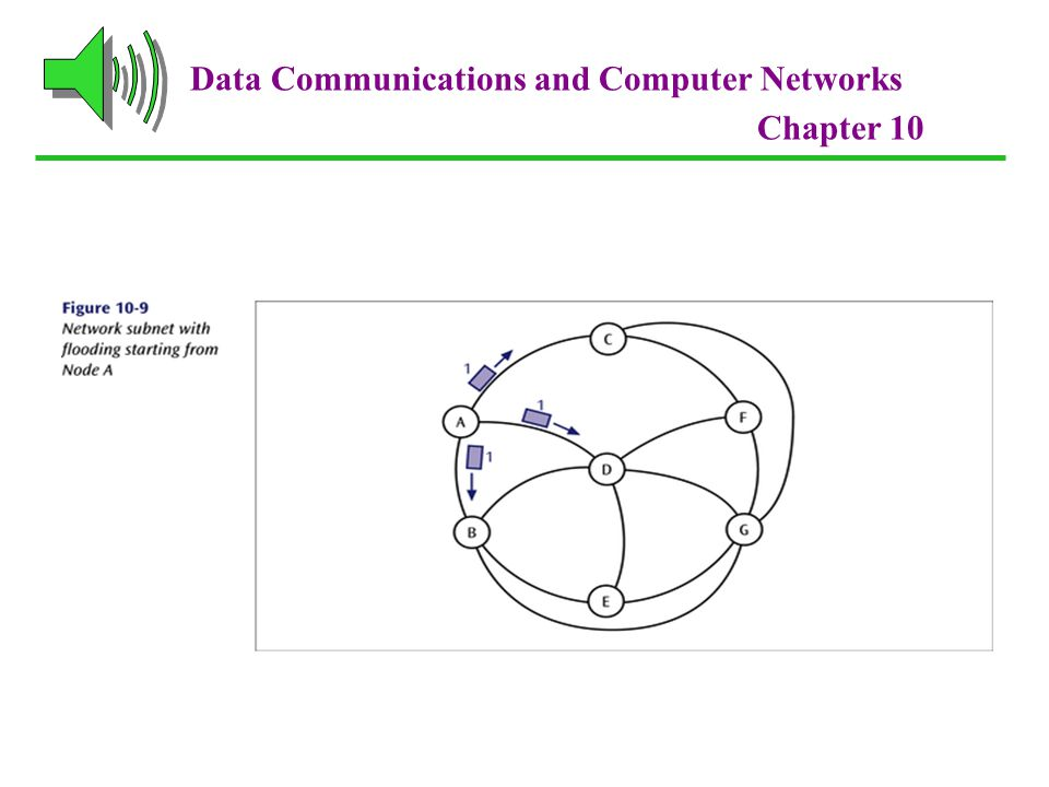 Data Communications and Computer Networks Chapter 10
