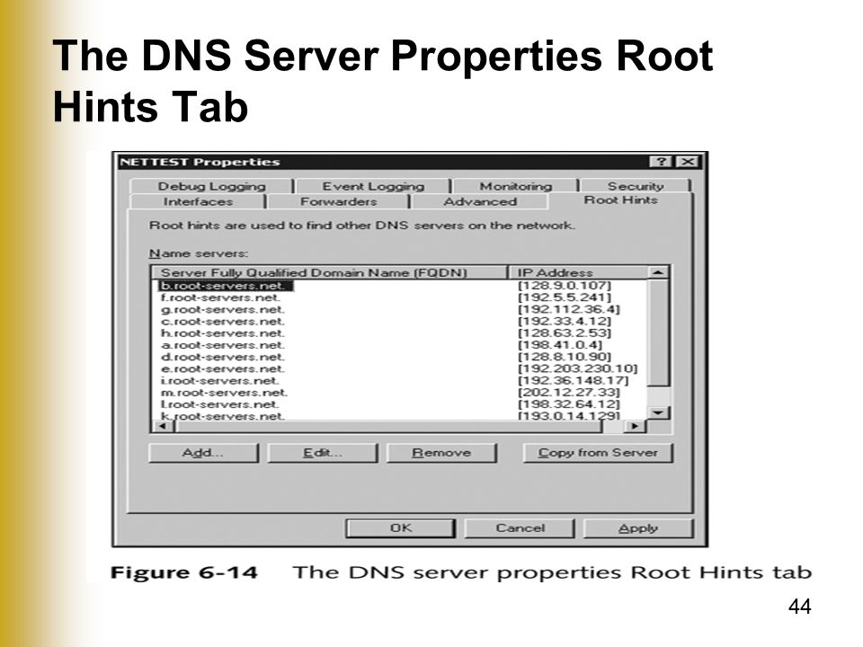 44 The DNS Server Properties Root Hints Tab